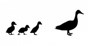 duck-220226_640